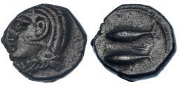 39  -  GADIR. Mitad. Último tercio s. III a.C. A/ Cabeza de Melkart con leonté a izq. R/ Dos atunes a izq., en medio letra fenicia resh. I-No. CNH-13 (mismo ejemplar ilustrado). ACIP-643 (mismo ejemplar ilustrado). MBC. Pátina oscura. Rara.