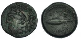 40  -  GADIR. Mitad AE. A/ Cabeza de Melkart a izq. R/ Atún a izq., encima y debajo ley. fenicia mp'l/´gdr. CNH-40. I-1345. ACIP-670. Concreciones rojas. MBC.
