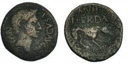 43  -  ILERDA. Augusto. As (27 a.C.-14 d.C.). A/ Cabeza a der. R/ Loba a der.; encima MVN/ILERDA. I-1487. RPC-260b. BC+.