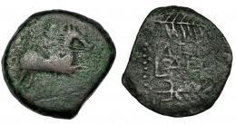 50  -  LAELIA. As. A/ Jinete a der. sobre línea. R/ LAELI(A) entre palma y espiga a der. AE 11,06 g. CNH-5. I-1647. ACIP-2365. BC-. Rara.