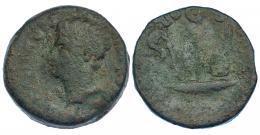 13  -  EBORA. Dupondio. Augusto. A/ Cabeza a izq. R/ Instrumentos pontificales. AE 22,53 g. I-900. RPC-50. Pátina verde. BC/MBC-. Rara.