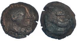 44  -  TIPO JABALÍ-CLAVA. As. A/ Cabeza masculina a der. R/ Jabalí a izq., encima clava. AE 12,4 g. CNH-1. I-No. ACIP-2437. BC-. Rara.