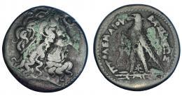 78  -  EGIPTO. Ptolomeo III (246-221 a.C.). AE-42. A/ Cabeza de Zeus-Amón a der. R/ Águila sobre haz de rayos a izq., delante cornucopia; entre las patas monograma XP; PTOLOMEOY BASILEOS. AE 68,81 g. COP-171 ss. SBG-7814. Zonas con pátina verde. MBC-.