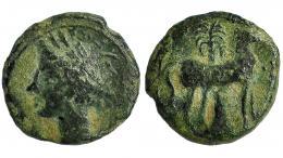 84  -  ZEUGITANIA. Cartago. Medio calco. A/ Cabeza de Tanit a izq. R/ Caballo a der. delante de palmera. AE 2,05 g. COP-109-113. SBG-6444. Pátina verde. BC+.