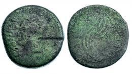 144  -  GADES. Sestercio. Augusto. A/ Cabeza de Agripa a izq. con corona rostral; AGRIPPA poco visible. R/ Acrostolio; (MVNICIP) PARENS. AE29,69 g. RPC-80. APRH-80b. ACIP-3310a. CC-4104, mismo ejemplar. Golpe de cizalla. MC/RC. Rara.