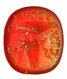 2041  -  ROMA. Imperio Romano. Entalle (I-II d.C.). Cornalina. Con representación de ave sujetando espiga. Alrededor leyenda CRV. SECVN. C. Longitud 11 mm.
