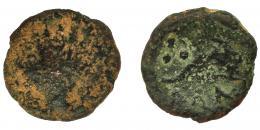 2034  -  HISPANIA ANTIGUA. KILI. Cuadrante. A/ Venera. R/ Delfín a der., encima tres glóbulos y debajo KiLI. I-1390. ACIP-2059. RC/BC. Rarísima.