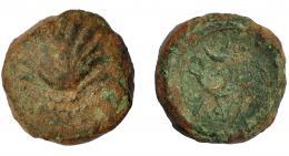 2078  -  HISPANIA ANTIGUA. ARSE-SAGUNTUM. Cuadrante. A/ Venera. R/ Delfín a der., encima creciente y 3 puntos, debajo MA MB. AE 3,2 g. 15,4 mm. I-2061. ACIP-2017. Pátina verde. BC. Muy rara.