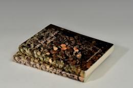 1027  -  LIBROS. Lote 2 libros: VV. AA., Les dévaluations à Rome, 1978 y 1980, Roma. Tapa blanda.