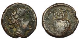 128  -  HISPANIA ANTIGUA. OLONTIGI. Unidad. A/ Cabeza masculina con manto a der. R/Piña, ley. l'nt. AE 5,28 g. 19,1 mm. I- 1878. ACIP-854. MBC-/BC+. Rara.