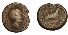 129  -  HISPANIA ANTIGUA. OLONTIGI. As. A/ Cabeza masculina a der. R/ Jinete a der., debajo (LONT) no visible. AE 9,25g. 24,3 mm. I-1877. ACIP-858. BC/BC-. Extremadamente rara.