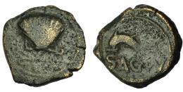 163  -  HISPANIA ANTIGUA. ARSE-SAGUNTUM. Cuadrante. A/ Venera con adornos. R/ Delfín a izq., debajo SAGVNT. AE 3,7 g. 17,8 mm. I-2089. ACIP-2010. BC/BC+. Rara.