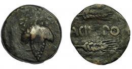 29  -  HISPANIA ANTIGUA. ACINIPO. As. A/ Racimo de uvas con estrella en la parte superior. R/ Dos espigas a der., en medio ACINIPO. AE 7,74 g. 21,6 mm. I-48. ACIP-2449. BC+. Rara.