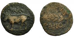 36  -  HISPANIA ANTIGUA. BAILO. Mitad. A/ Toro a izq., encima estrella y creciente con punto. R/ Espiga a izq., encima ley. libio-fenicia b'l'bln, debajo BAILO. AE 3,93 g. 22,1 mm. I-185. ACIP-924. BC-. Muy escasa.