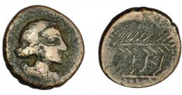 57  -  HISPANIA ANTIGUA. CERIT. Semis. A/ Cabeza laureada a der. R/ Dos palmas a der., en medio CERI. AE 5,56 g. 20,3 mm. ACIP-2414. I-824. BC+. Rara.