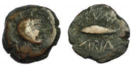 59  -  HISPANIA ANTIGUA. CUMBARIA. Semis. A/ Cabeza masculina a der., detrás delfín. R/ Atún a izq., CVNB/ARIA. AE7,77 g. 20,6 mm. I-880. ACIP-2620. BC/BC+.