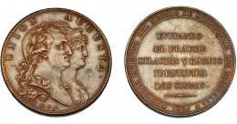 600  -  CARLOS IV. Medalla. 1801. Invento de DROZ. Canto liso. Firma M.G.S. (Sepúlveda). AE 39,5 mm. MPN-305 vte. EBC.