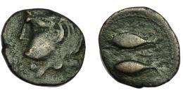 69  -  HISPANIA ANTIGUA. GADIR. Mitad. A/ Cabeza de Melkart a izq. R/ Dos atunes a der., en medio letra fenicia ¿peh? tumbada. AE 4,80 g. 18,8 mm. I-1317 vte. ACIP-642. MBC-/BC+. Muy rara.