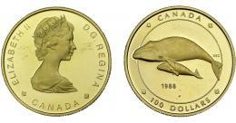 1092  -  MONEDAS EXTRANJERAS. CANADÁ. 100 dólares. 1988. KM-162. Rayitas en anv. B.O. Prueba.