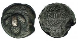 220  -  HISPANIA ANTIGUA. ACINIPO. As. A/ Racimo. R/ Dos espigas a der., en medio (A)CINIPO. AE 8,09 g. 22 mm. I-46. ACIP-2444. Rara. MBC-/BC+.