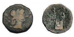 261  -  HISPANIA ANTIGUA. OBULCO. Semis. A/ Cabeza femenina con ínfulas a der. R/ Lira, a izq. creciente y IIII, a der. OBV(L)C(O). AE 2,62 g. 17,5 mm. I-1852. ACIP-2251. Rayitas en anv. BC. Rarísima.