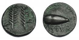 268  -  HISPANIA ANTIGUA. OSTUR. Semis. A/ Dos espigas. R/ Bellota, debajo OSTVR. AE 5,22 g. 18,5 mm. I-1975. ACIP-2432. Pátina verdosa. MBC+. Rara.