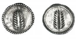 324  -  GRECIA ANTIGUA. LUCANIA. Metaponto. Estátera (540-510 a.C.). A/ Espiga; a izq. MET. R/ Espiga incusa. AR 8,04 g. 27,6 mm. COP-1159. SBG-235. MBC+. Muy rara en esta conservación. Ex col. Guadán 1411.