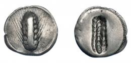 325  -  GRECIA ANTIGUA. LUCANIA. Metaponto. 1/3 estátera ( 540-510 a.C.). A/ Espiga. R/ Espiga incusa. AR 2,12 g. 18,4 mm. COP-1174 vte. MBC-. Ex col. Guadán 1412.
