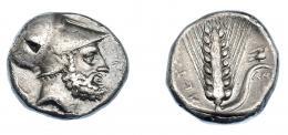 326  -  GRECIA ANTIGUA. LUCANIA. Metaponto. Estátera (340-330 a.C.). A/ Cabeza con casco de Leucipo a der., detrás perro, delante (LEUKIPPOS), debajo S. R/ Espiga con paloma sobre hoja a der., debajo AM, a izq. META. AR 7,81 g. 19,8 mm. COP-1210. SBG-415. Leves oxidaciones. MBC/MBC+. Ex col. Guadán 1415.