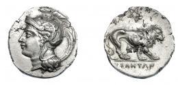336  -  GRECIA ANTIGUA. LUCANIA. Velia. Didracma (300-280 a.C.). A/ Cabeza de Atenea a izq. con casco ático decorado con grifo. R/ León a der., encima pentáculo entre Φ e I; en exergo YEΛHTΩN. AR 5,53 g. 21,6 mm. COP-no (COP-1581 busto a der.). SBG-454 vte. EBC-. Ex col. Guadán 1459.
