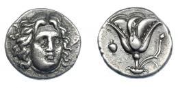 429  -  GRECIA ANTIGUA. ISLAS DE CARIA. Rodas. Didracma (305-275 a.C.). A/ Cabeza de Helios de frente a der. R/ Rosa, a izq. ánfora y EY. AR 6,60 g. 20,5 mm. COP-730. SBG-5048 vte. Leves concreciones. MBC/MBC+.  Ex col. Guadán 2388.