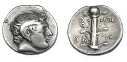457  -  GRECIA ANTIGUA. CIRENAICA. Cyrene. Didracma (308-277 a.C.). A/ Cabeza de Apolo Carneios a der. R/ Planta de silfio con cuatro hojas, a izq. serpiente y a der. monograma KY-PA. AR 7,70 g. 22,2 mm. COP-1239 vte. (cabeza a der. y KY en vez de YK). SBG-6318 vte. Finas rayas. MBC-/MBC. Escasa. Ex col. Guadán 2992.