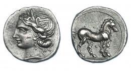 461  -  GRECIA ANTIGUA. ZEUGITANIA. Cartago. 1/4 de siclo (221-202 a.C.). A/ Cabeza de Tanit a der. R/ Caballo a der., punto entre las patas. AR 1,76 g. 14,2 mm. COP-337. SBG-6499. MBC+/EBC-. Ex col. Guadán 3015.