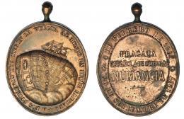 919  -  ISABEL II. Medalla. Vuelta al mundo de la fragata Numancia. 1865-1867. Grabador Sellán. AE 35x30 mm. Guerra-730. Rara. EBC-.