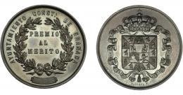 943  -  ALFONSO XII. Medalla. Ayuntamiento de Granada. Premio al Mérito. Grabador: Barrére. AE 36,5 mm. SC.