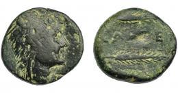 1139  -  HISPANIA ANTIGUA. CALLET. As. A/ Cabeza con leonté a der. R/ Dos espigas a der., en medio CA(LL)ET. AE 16,64 g. 24,7 mm. I-433. ACIP-2411. Pátina oscura. BC+.