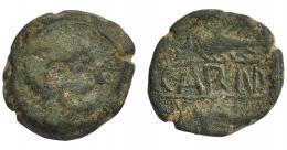 1164  -  HISPANIA ANTIGUA. CARMO. As. A/ Cabeza masculina a der. R/ Dos espigas a der., en medio entre líneas CARM(O). AE 13,45 g. 24,4 mm. I-461. ACIP-2401. Pátina verde oscuro. BC/BC+. Compra privada Pliego (1992).