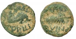 1187  -  HISPANIA ANTIGUA. CARTHAGO NOVA. Semis. Fines s. I a.C.-s. I-d.C. A/ Delfín a der., encima (C) CAEDI, debajo (T) POPILI. R/ Palma; (II VIR)/QVINQ. AE 5,37 g. 20,5 mm. I-570. APRH-147. ACIP-2526. Pátina verde terrosa. BC+.