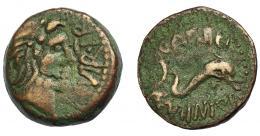 1216  -  HISPANIA ANTIGUA. CARTEIA. Cuadrante. A/ Cabeza de Neptuno a der., delante IIII VIR T(ER). R/ Delfín a der., encima CARTEI, debajo C MINI Q F. AE 4,91 g. 19 mm. I-626 (vte.). ACIP-2599. Pátina verde. MBC-.