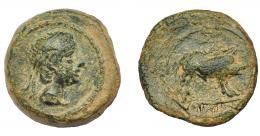 1249  -  HISPANIA ANTIGUA. CASTULO. Cuadrante. A/ Cabeza masculina diademada a der. R/ Jabalí a der., encima estrella, debajo KaSTiLO. AE 3,72 g. 16,2 mm. I-733 (vte.). ACIP-2152. Pátina verde. MBC-/BC+. Compra privada Pliego (1994).