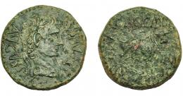 1290  -  HISPANIA ANTIGUA. CELSA. Tiberio. As. A/ Cabeza laureada a der.; TI CAESAR AVGVSTVS. R/ Toro a der.; BAGG FRON/ CN BVCCO, delante II VIR, detrás C V I CEL. AE 10,56 g. 26,2 mm. I-819. APRH-279. ACIP-3170. Rayitas. Pátina verde rugosa. BC+. Ex Áureo, 29-9-1998, lote 614.