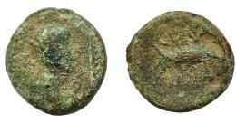 1316  -  HISPANIA ANTIGUA. CUMBARIA. Semis. A/ Cabeza masculina a der., delante palma, detrás S. R/ Atún a der., CVNBARIA. AE 12,38 g. 24,3 mm. I-881. ACIP-2619. Pátina verde con erosiones. BC-/BC. Rarísima.