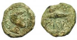 1318  -  HISPANIA ANTIGUA. CUMBARIA. Semis. A/ Cabeza masculina a der., detrás S. R/ Atún a izq., (CVN)B/ARIA. AE 6,74 g. 19,8 mm. I-880. ACIP-2621. Pátina verde rugosa. MBC/MBC-.