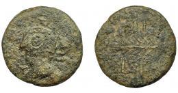 1038  -  HISPANIA ANTIGUA. ARSA. Unidad. A/ Cabeza masculina a izq., alrededor (A)R(SA). R/ Palma, ley. libio-fenicia poco visible. AE 9,48 g. 26,6 mm. I-131. ACIP-910. Superficies rugosas. BC. Muy rara. Ex Áureo, 22-10-1997, lote 224.