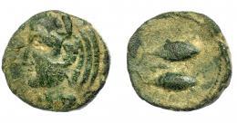1383  -  HISPANIA ANTIGUA. GADIR. Mitad. A/ Cabeza de Melkart con leonté a izq. R/ Dos atunes a izquierda, en medio letra bet. AE 4,99 g. 18,1 mm. I-No. ACIP-639. Pátina verde. BC+/MBC-.