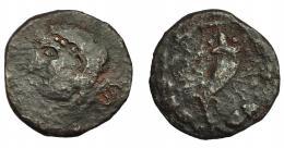 1050  -  HISPANIA ANTIGUA. ASIDO. Semis. A/ Cabeza de Melkart con leonté a izq., detrás (ASIDO). R/ Cornucopia con rayos, alrededor láurea. AE 3,44 g. 19,4 mm. I-154. ACIP-922. BC+. Rarísima. Compra privada a Pliego (1999).