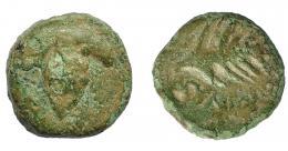 1056  -  HISPANIA ANTIGUA. BAICIPO. Semis. A/ Racimo de uvas, a izq. S. R/ Espiga a der., debajo BAIC(IP). AE 6,62 g. 18,7 mm. I-183. ACIP-2507. Pátina verde. BC+. Compra privada Pliego (1994).