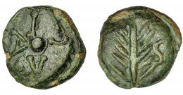 1820  -  HISPANIA ANTIGUA. UGIA. Semis. A/ Espiga, a der. S. R/ Disco, alrededor VGIA. Ae 7,34 g. 19,94 mm. I-2478. ACIP-2649. Pátina verde. MBC. Muy rara. Ex Hervera, 28-5-2003.