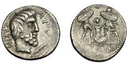 114  -  REPÚBLICA ROMANA. TITURIA. Denario. Roma (89 a.C.). A/ Cabeza del rey Tacio a der, delante palma y ley. A PV; detrás SABIN. AR 6,67 g. 18,35 mm. CRAW-344-1c. FFC-1155. Fina grieta. MBC.