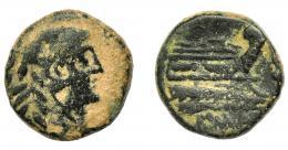 118  -  REPÚBLICA ROMANA. ACUÑACIONES ANÓNIMAS. Cuadrante. Roma (91 a.C.). A/ Cabeza de Hércules a der. R/ Proa a der., debajo ROMA. AE 3,87 g. 15,93 mm. CRAW-339/4c. BC/BC+.
